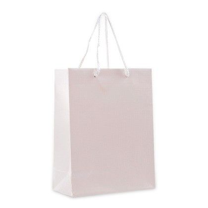 Off-white Gift Paper Bags - Set Of 2 - Ribbon