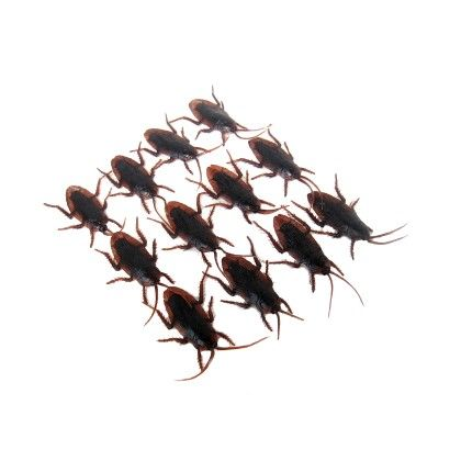 Novelty Cockroach 12 - Piece Set - GLOPO