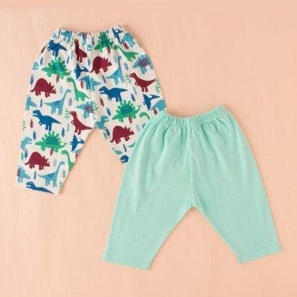 Aquamarine & Dino Print Boy Pant Set Of -2 - BEN BENNY