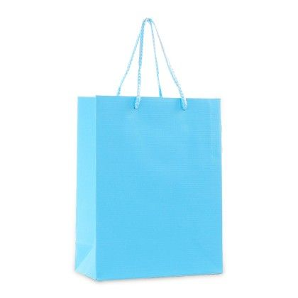 Sky Blue Gift Paper Bags - Set Of 2 - Ribbon