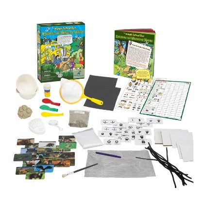 The Magic School Bus - Explore The Wonders Of Nature - The Young Scientists Club