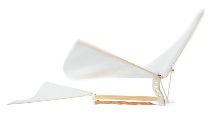 Rubber Band Ornithopter - NPW