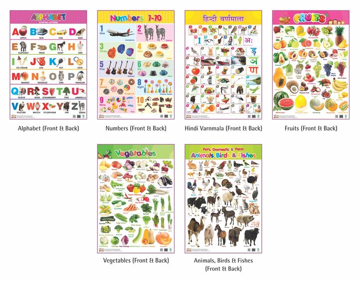 Educational Chart Set of 6