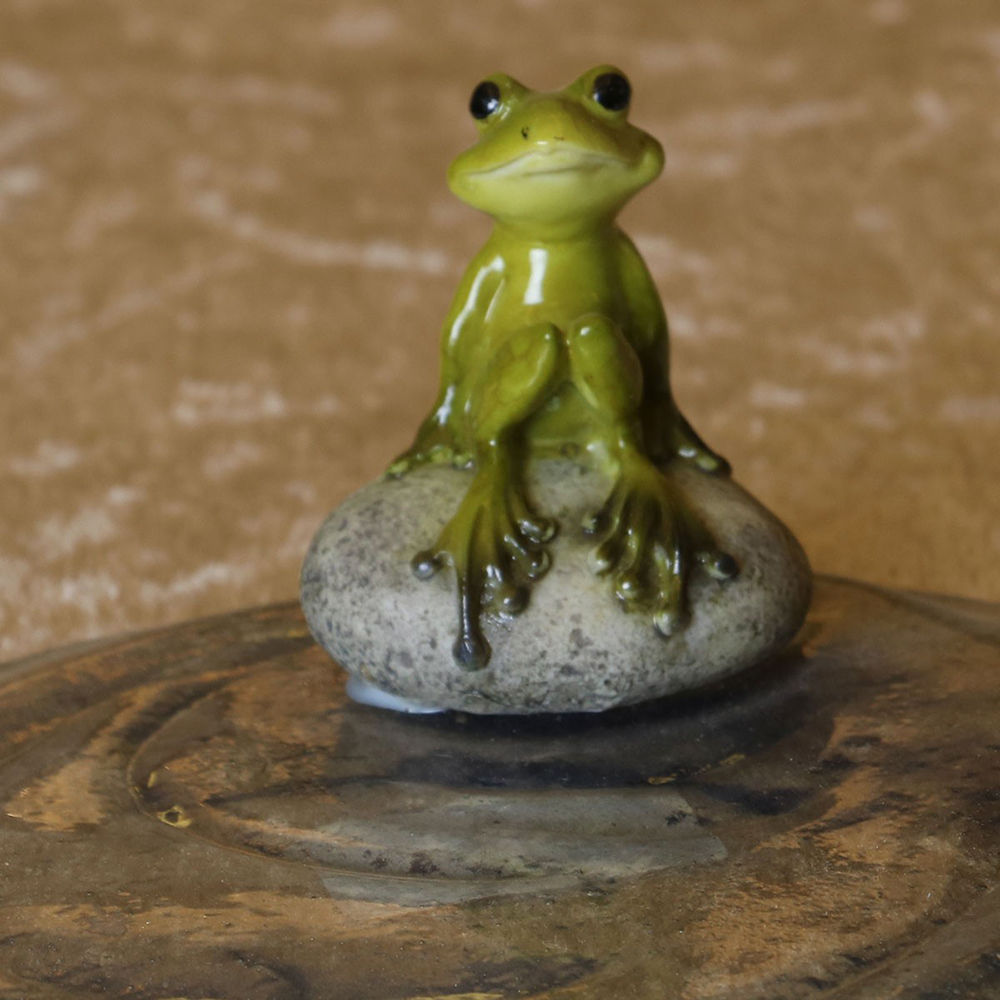 Hopscotch - HOME 4 YOU - Frog In A Lake - Show Piece