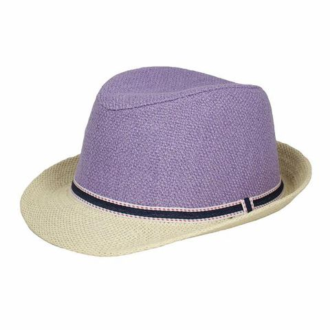 7609458784757 Solid Solid Purple Cotton Hat Purple. Sold out